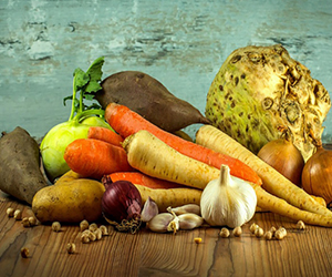 Unsur Gizi Makanan & Kesehatan